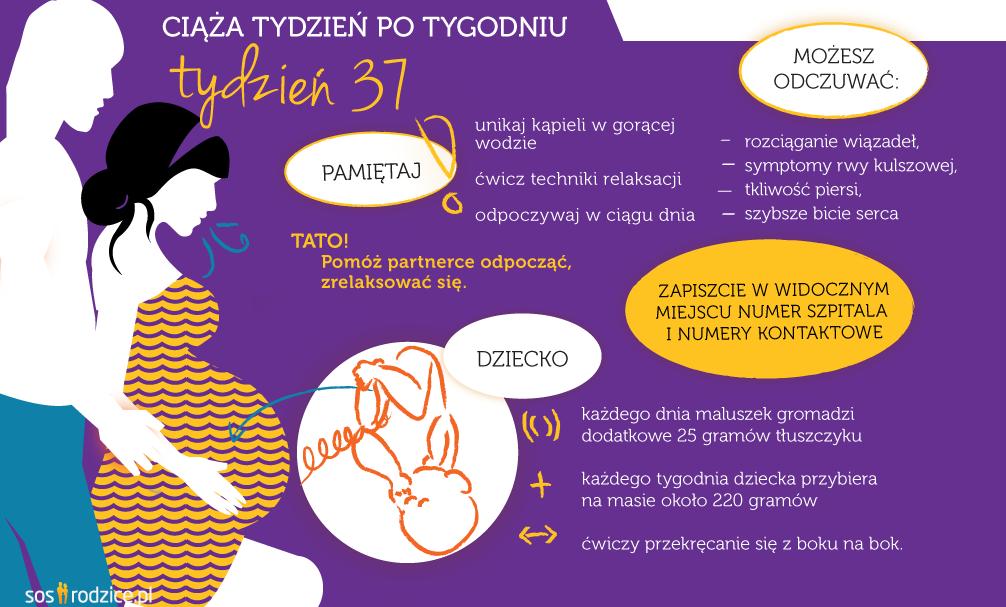 37 tydzień ciąży infografika
