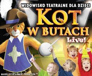 kot-w-butach-300x248