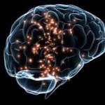 Jak macierzyństwo zmienia mózg kobiety?