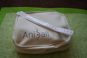 Aniball balonik