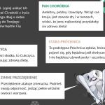 """""""Panna cukrzyca"""" – kontrowersyjna karta z Biedronki i oburzenie rodziców dzieci chorujących na cukrzycę"""