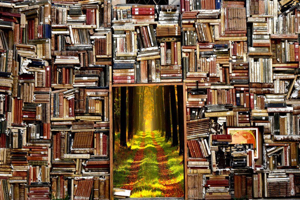 biblioteka z lekturami online