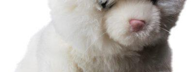 Interaktywne zwierzątko dla dziecka. Czy warto je kupić?