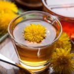 Herbata z mniszka lekarskiego – wzmacnia i leczy